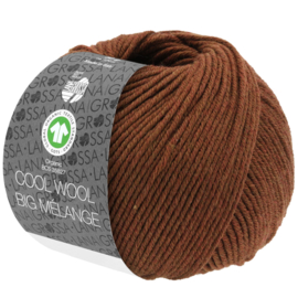 Cool Wool Big 216 Hazelnoot Levering 1 week