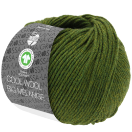 Cool Wool Big Mélange 340/213 Groen