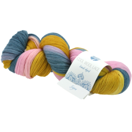 Cool Wool Lace Hand-dyed 811