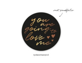 Nynke ontwerpt stickers | You are going to love me | 4,5 cm | per 5 stuks