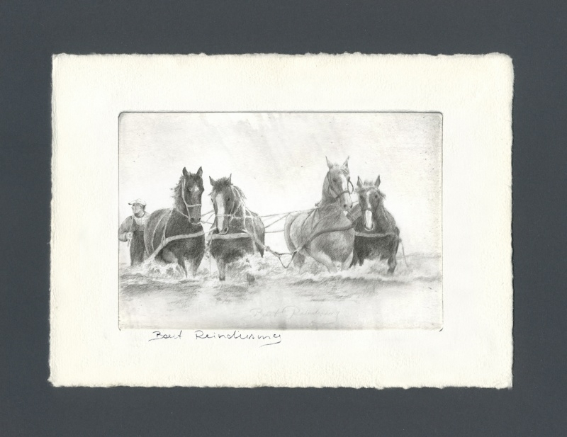 1225 Ameland, paardenreddingboot