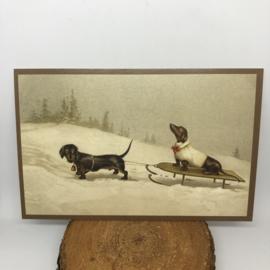 Kerstkaart   Teckels in de sneeuw