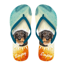 Teckel Slippers | Maat 40-42