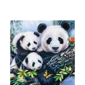 Panda Servetten 25x25 cm