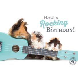 Verjaardagskaart | Cavia's