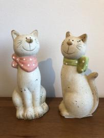 Katten stelletje