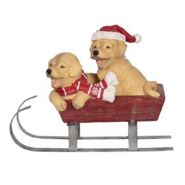 Kerst | Labradors op een slee met ledlichtjes