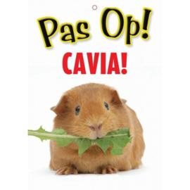 Waakbord Pas op Cavia!