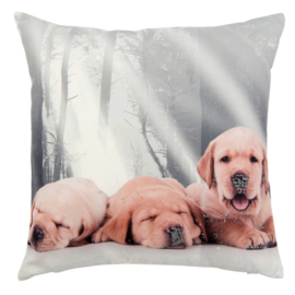 Kussen | Labradors