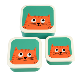 Lunchboxjes | Chester the Cat