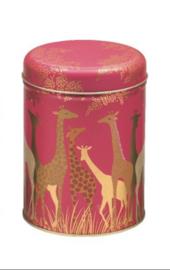 Rond blik Giraffes