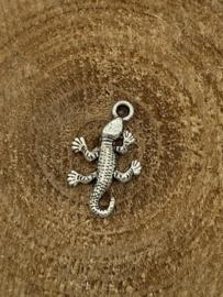 Bedel | Salamander
