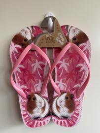 Slippers | Cavia's | Maat 37-39