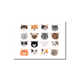 Ansichtkaart   Kattenkopjes