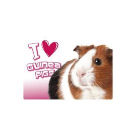 Placemat I love guinea pigs