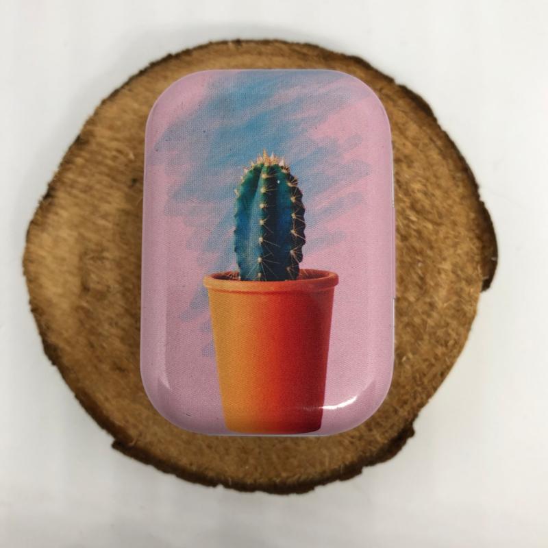 Blikje   Cactus