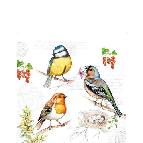 Servetten Vogeltjes
