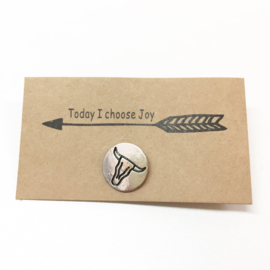 Pin longhorn