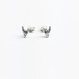 longhorn/ buffel