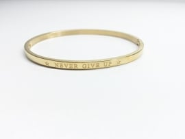 "Stainless Steel armband goud dun ""never give up"""