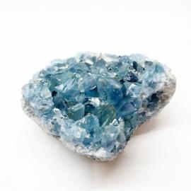 Blauwe Celestien M
