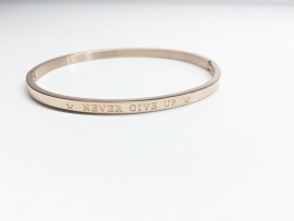 "Stainless Steel armband rose dun ""never give up"""