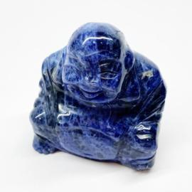 Boeddha Dumortieriet