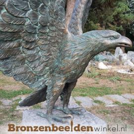 Groot adelaar beeld BBWR88859