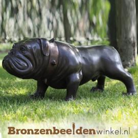 Honden beeld bulldog BBW97078