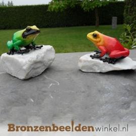 Bronzen exotische kikkers op keitjes BBW1071BR