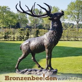 Grote bronzen hert BBW67010