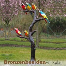 Bronzen papegaaien beeld BBW57884br