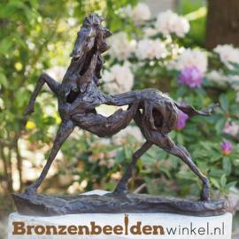 NR 8 | Tuinbeeld abstract paard als blijvende herinnering BBW88194