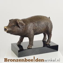 Bronzen beeld varken op sokkel BBW1170
