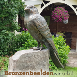 Vogel tuinbeeld van torenvalk op sokkel BBWR88462