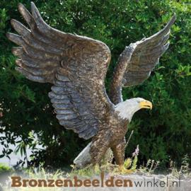 """Levensgrote witkop adelaar """"American Eagle"""" BBWR88632"""
