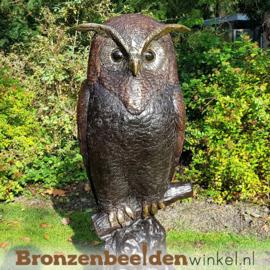 Grote bronzen uil beeld voor in de tuin BBW57491