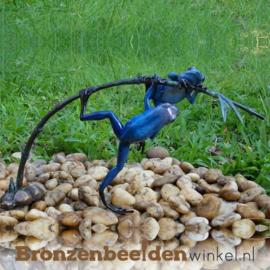 Beeld blauwe regenwoudkikkers BBW0980BR