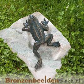 Kikker beeld brons BBWR88496