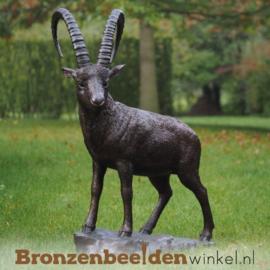 Groot beeld steenbok brons BBW1276