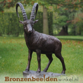 Beeld steenbok brons BBW1276