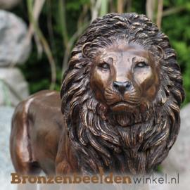 Bronzen leeuw beeld BBW0600