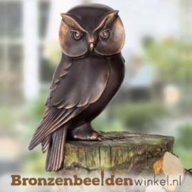 Bronzen uilen beeldje BBW37234