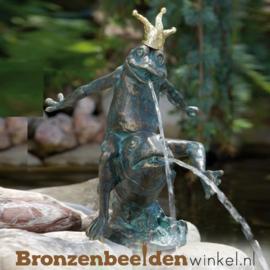 Prins kikker beeld Robin BBWR88094