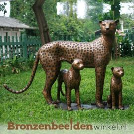 Groot bronzen beeld luipaard familie BBW1128