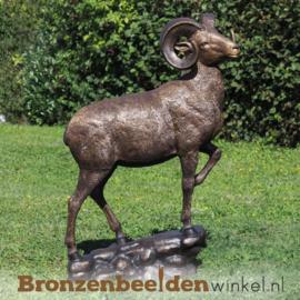 Bronzen ram beeld BBW1295