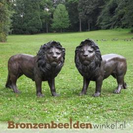 Bronzen leeuwen beelden voor in de tuin BBW1048