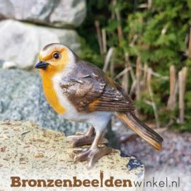 Bronzen roodborst vogeltje BBWF6535fa02