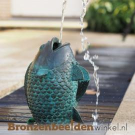 Spuitfiguur vis als fontein BBW1141BR