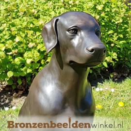Blijvende herinnering aan Labrador van brons BBW678
